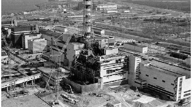 След аварията в Чернобил оставят 10 диви коня да пасат отровната трева. Вместо да умрат, стават 150