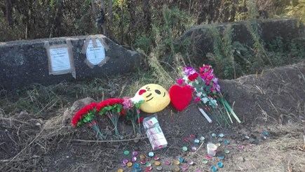 Пет години затвор за прегазено до смърт дете в Белослатинско