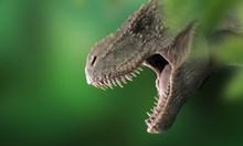Откриха кости от неизвестен досега тиранозавър
