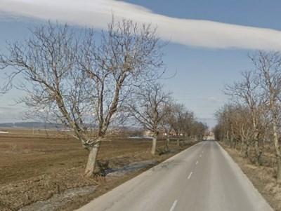Пътят Златна нива - Избул СНИМКА: Google Street View