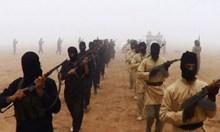 Мащабната спецакция е за банда, финансирала терористи, 43-ма са арестувани
