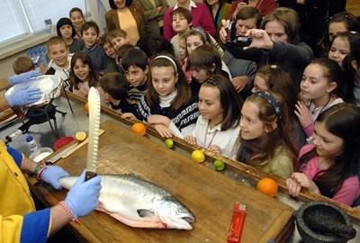 Здравословното хранене на децата включва поне веднъж в седмицата риба.