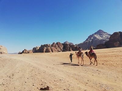 Може да яздите камили в пустинята Уади Рум. СНИМКИ: АВТОРЪТ