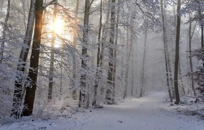Валежи от дъжд и сняг, максимални температури от 0 до 5 градуса СНИМКА: Pixabay