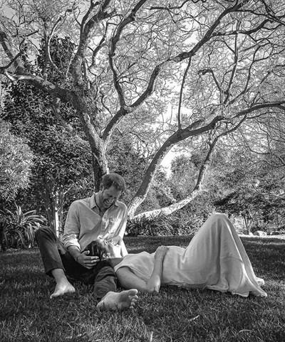 Дървото, под което е направена снимката на принц Хари и Меган Маркъл, е софора. Листата му имат вълшебни свойства и излъчват сладък аромат.  СНИМКА: Архив