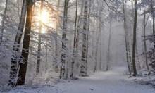 Валежи от дъжд и сняг, максимални температури от 0 до 5 градуса