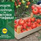 Lidl предлага 100 % български розови домати и био краставици