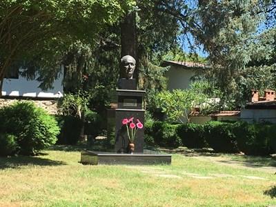 6 розови гербера сложиха роднини на Тодор Живков на паметника му. СНИМКИ: АВТОРКАТА