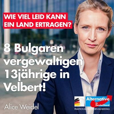 """Плакатът на кампанията на """"Алтернатива за Германия"""""""
