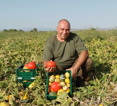 Иван Веселинов: Благодарение на партньорството с Kaufland сме един от най-големите производители на декоративни тикви