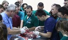 """Национална академия по хирургия в """"Лозенец"""" мотивира бъдещите лекари да остават тук"""
