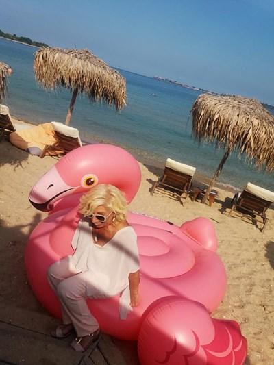 Силвия Кацарова с розовото фламинго