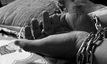 Европол хвана трима българи и французин за трафик на хора