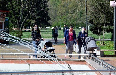 В Южния парк в София около 1/3 са частни имоти