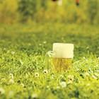 Билки повишават антиоксидантите в бирата