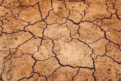 Сушата - реките вече празни, за месец водата намаля с 40%
