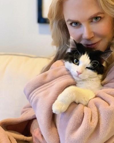 Кидман с котката Луис СНИМКИ: Инстаграм/ nicolekidman
