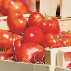 Паричната стойност на световния износ на храни се е увеличила 3,6 пъти в номинално изражение между 2000 и 2018 г.