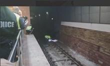 """8 дни търсят котка на релсите на метростанция """"Сердика"""". След намеса на граждани спряха влаковете, за да я спасят"""