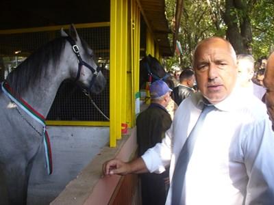 Премиерът Бойко Борисов хареса българските породи коне, показани на изложението. СНИМКА: Ваньо Стоилов
