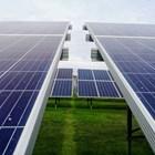 Соларните паркове и биологичното разнообразие: има какво да се подобри