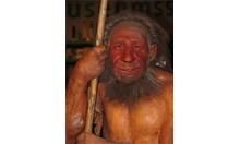 Учени: Неандерталците са правели растителни влакна