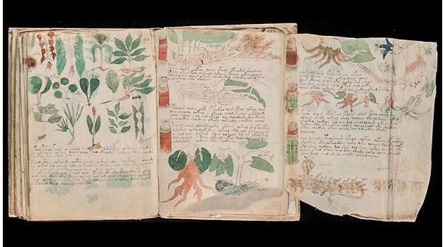 Разгадаха окончателно най-тайнствената книга в света: Извънземните нямат нищо общо, ръкописът на Войнич е гинекологичен наръчник за жени