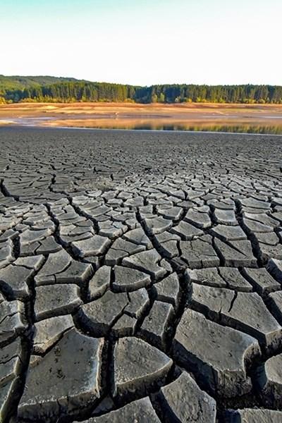 """Язовир """"Студена"""" през ноември месец изглеждаше пресъхнал. Снимка: """"24 часа"""""""