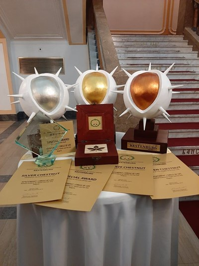 С шест награди ще се завърне класът на проф. Жени Пашова от Международния фестивал на студентския театър KESTENBURG.