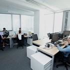IT секторът също пострада от пандемията, но почти всички компании очакват ръст на бизнеса си до 12 месеца.