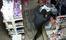 Крадци ограбиха магазин в Плевен за 47 секунди, задигнаха стекове с цигари