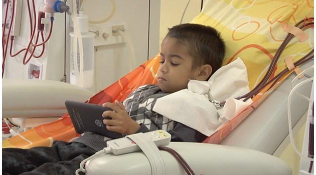 Лекари не трансплантират 6 г., но искат малкия Байрям за опитно зайче