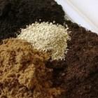 Осигурете съставките на почвата за разсадите