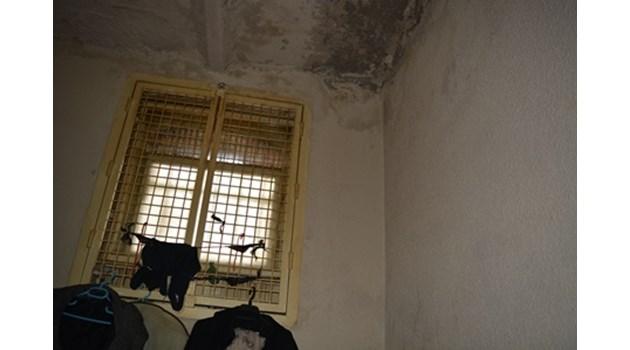Вижте килията, в която лежи Иванчева. Лоша хигиена, мухъл, влажни стени, липса на свеж въздух и светлина