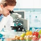 Инвестициите в алтернативни протеини растат главоломно