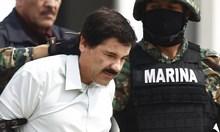 Първите думи на агента на ДЕА, заловил Ел Чапо след 7 години преследване: Какво става?