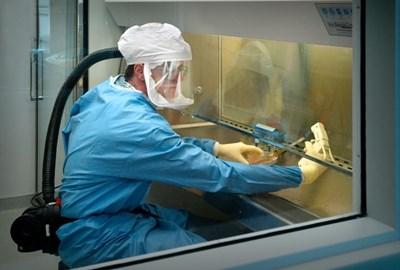 Учени: Имунитетът към COVID е много по-масов, отколкото сочат тестовете