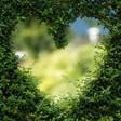 Доклад: 40% от растителните видове са застрашени от изчезване