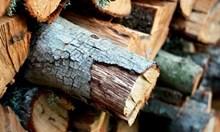 Mъж, превозвал нелегално дърва за огрев, отнесе 5 акта