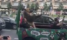 Мечка показа неприличен жест в Москва след 5:0 над Саудитска Арабия