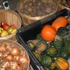 Съхранение на зеленчуци