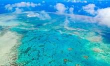 """Китайски учени """"засадиха"""" корали на морското дъно в Хайнан"""