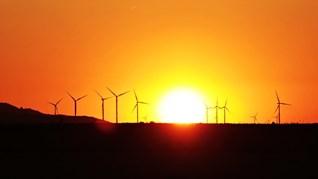 Проучване: Всяко следващо лято ще бъде още по-горещо заради климатичните промени