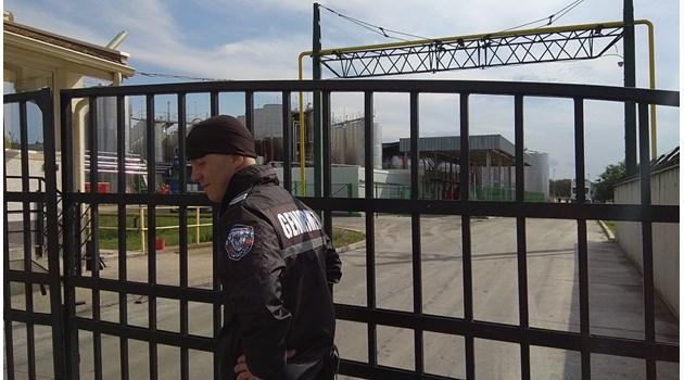Над 50 камиона с грозде блокирани пред завода на Миньо Стайков, проверките продължават
