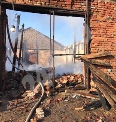 Пожар изпепели коне във ферма на врачанско село