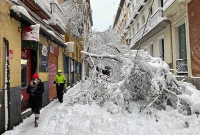 Сняг и откършени дървета покриват улица в Мадрид.