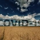 Опасенията от втора вълна на COVID 19 отново притиснаха агропазарите