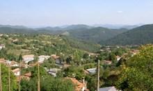 Родопчанин създава в интернет родословна гора на цяло село