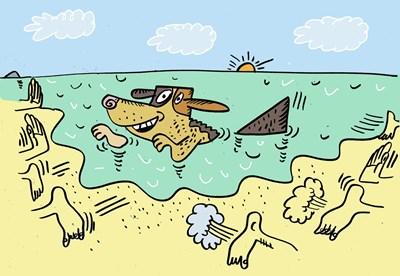Да кръстиш кучето си Акула и да го заведеш на северния плаж в Бургас, е лоша идея