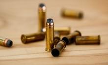 Осъдиха мъж от Берковица, незаконно държал пушки, пистолети и патрони